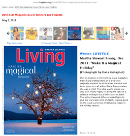 ASME 2012 Best Lifestyle Magazine Cover: Martha Stewart Living, December 2012